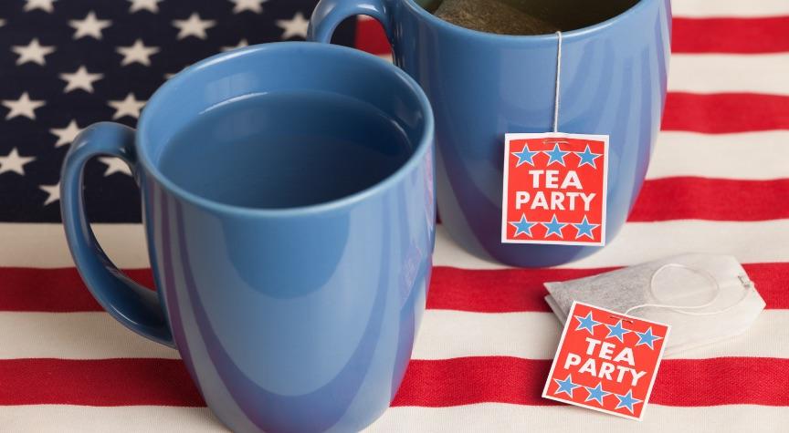 "Tea Party Isn't A ""Social Welfare Organization,"" So No Tax-Free Status"