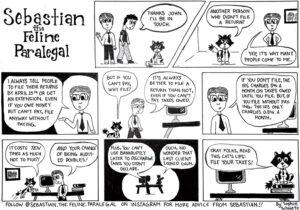 Seb Comic Tax Audit